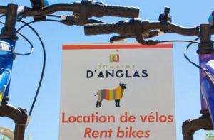 Vélos en location au Camping du Domaine d'Anglas