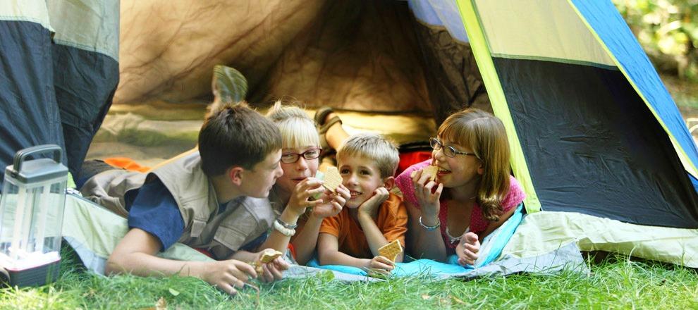 camping famille la foret lourdes camping du domaine d 39 anglas. Black Bedroom Furniture Sets. Home Design Ideas