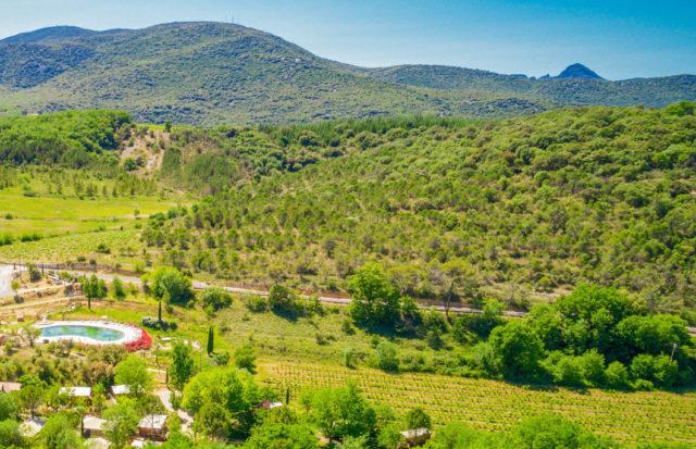 Camping dans un vignoble en Hérault