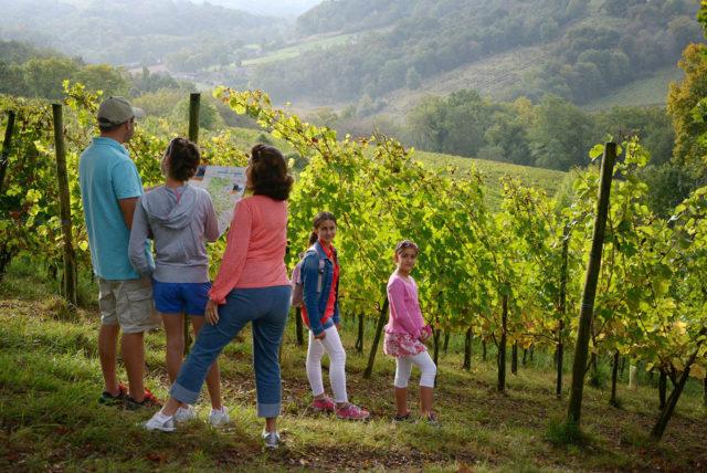 Randonnée cevennes sentier vigneron