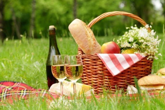Pique nique en Vignoble Cévenol