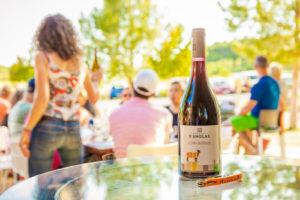 Wine tourism in the Cévennes