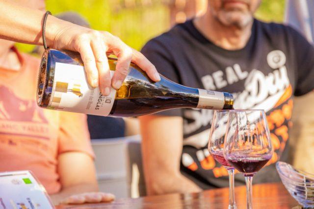 degustation des vins du domaine d'anglas
