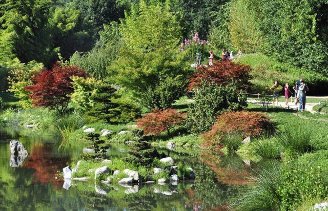 Jardin coloré en Cévennes